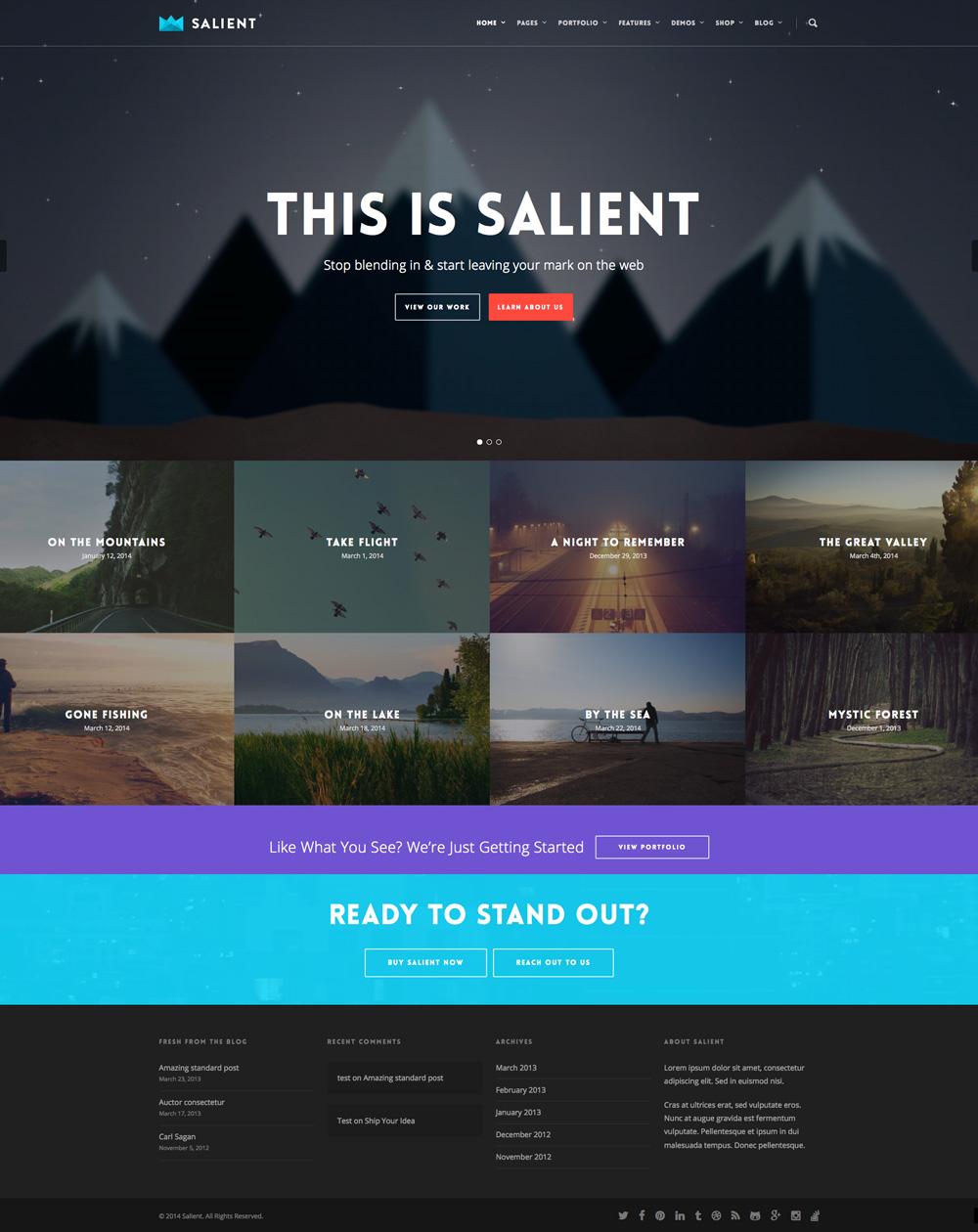 Salient | WordpressKing